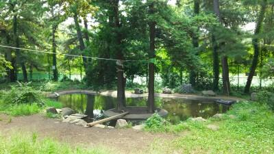 プレーパーク池