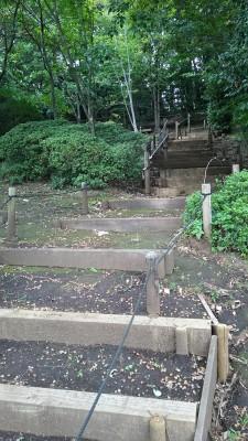 どんぐり公園の階段